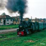 Einige Meter weiter konnte 764 205 in Alțâna zeigen, welche Kraft in ihr steckt.