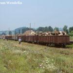 In Agnita werden an diesem Tag erhebliche Mengen Holz bewegt. Die waldreiche Gegend der Harbach-Region sorgte über lange Jahre für entsprechende Frachttransporte auf der Schmalspurbahn.