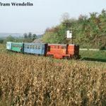 Mixt 2922 biegt ums Eck, um kurz darauf den Bahnhof Cornățel zu erreichen.