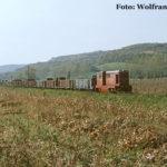 Güterzug nach Agnita bei Hosman.