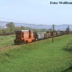 Noch einmal der lange Güterzug, nun bei Benești.