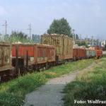 Hier ist gut zu erkennen, dass Holz auf der Wusch nicht nur in offenen Schmalspurgüterwagen sondern ebenso auch in Containern unterschiedlicher Bauart transportiert wurde.