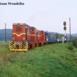 87 0017 und 0011 bespannen Mixt 2923 am 15.08.1997, hier bei Șelimbăr. Der gemischte Zug macht seinem Namen alle Ehre, denn am Zugschluss wird noch mehr Holz in Güterwagen nach Sibiu gebracht.