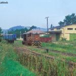 Zur Rückfahrt setzt die Lok im Endbahnhof Agnita um den Wagenpark