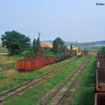 Noch ein Blick über die Anlagen des 1969 eröffneten neuen Bahnhofs von Agnita. Die Güterwagen sind zum Zeitpunkt der Aufnahme schon einige Jahre arbeitslos