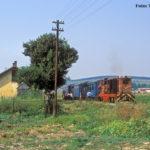 Nachmittäglicher Halt in Alțâna